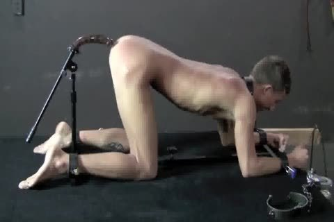 bondage sex boy gay