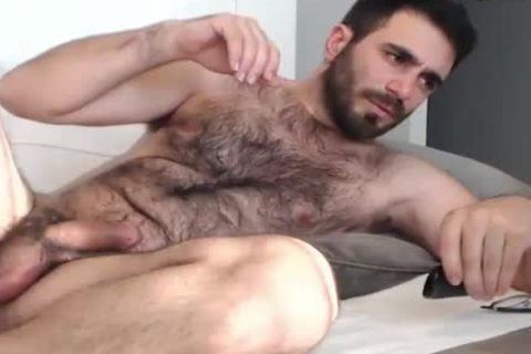 bushy Bear Wanks And spooge