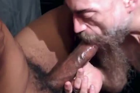 delicious Bearded engulf So admirable A admirable cock